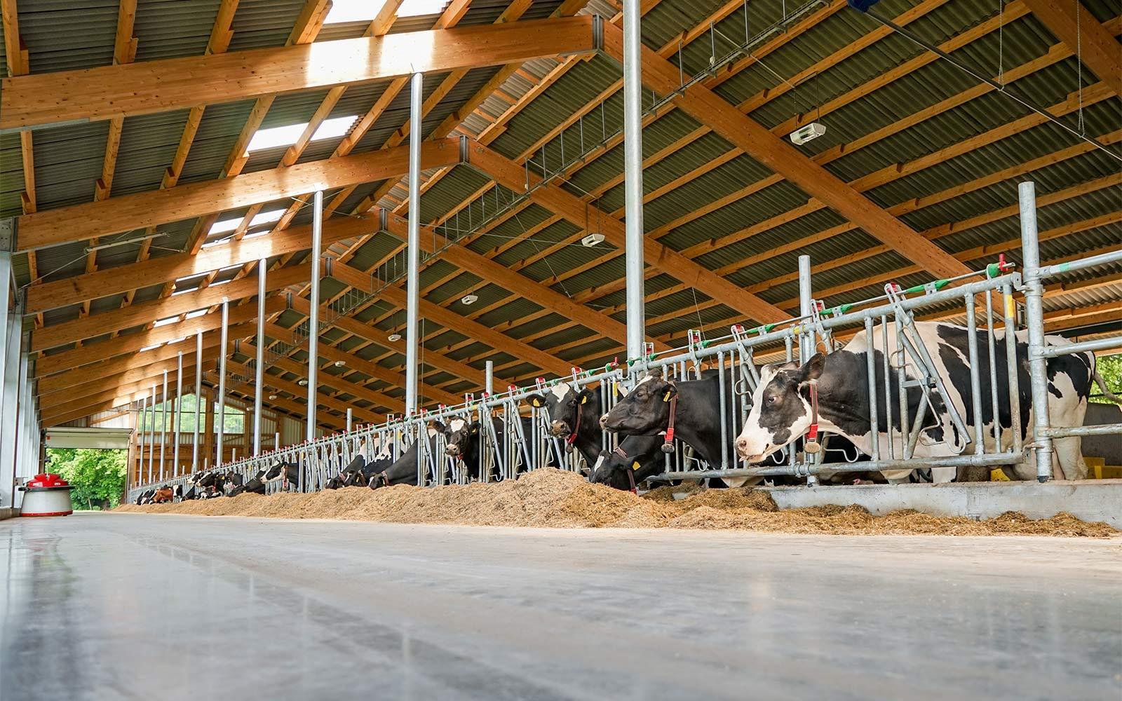 Fotolia_102497652_Subscription_Monthly_XXL_Start_Landwirtschaft